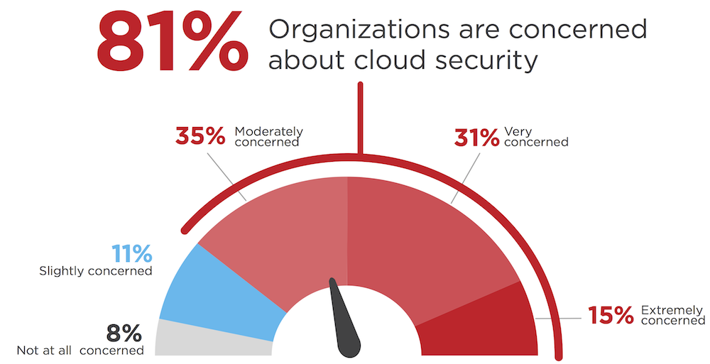 1-concern-security-cloud.png