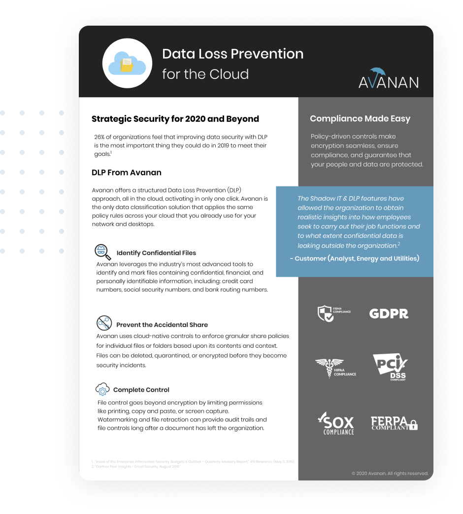 data-loss-prevention-brief